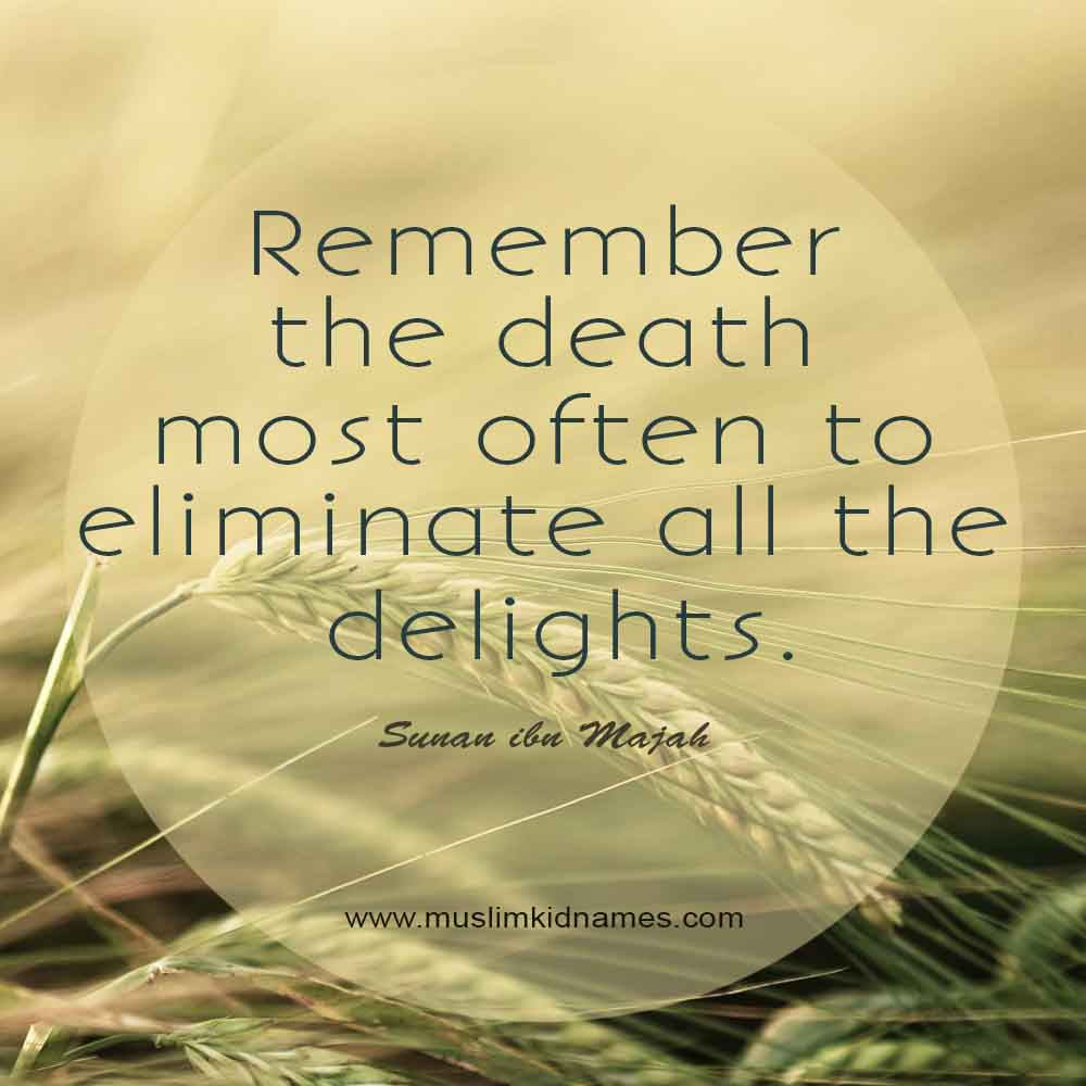 Remember death at all time free islamic quote
